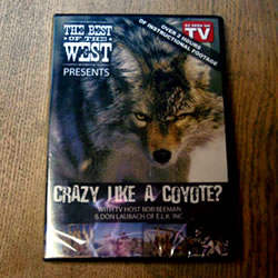 Crazy Like A Coyote? Video